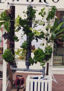 Udstillingsmodel køb hydroponics system anlæg